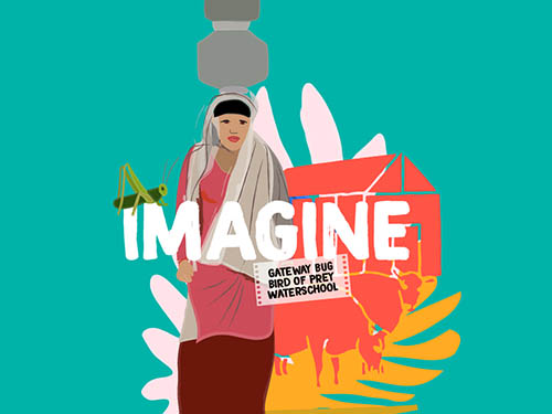 4 Nov: IMAGINE